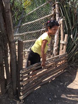 girl on fence 358 x 269